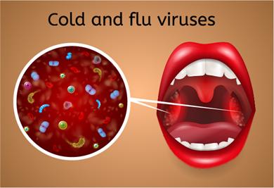 Đau họng do virus, vi khuẩn gây viêm họng